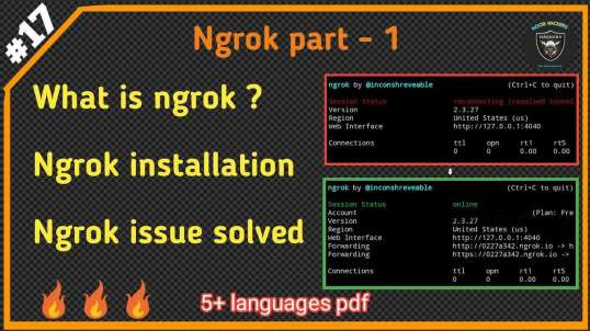 Ngrok Installation And Reconnecting Issues Fixed | By Noob Hackers